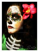 Colorful Catrina by MariaRSoto