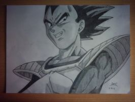 vegeta by tonetto17