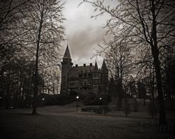 Teleborg Castle #2 by mli93