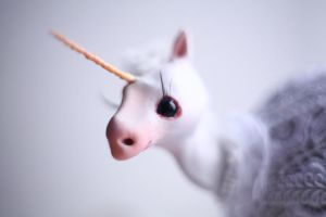 unicorn close up by da-bu-di-bu-da