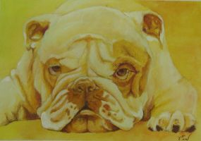 Yellow Dog by Marbletoast