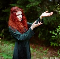 Elven Lady of the Forest 5 by ivoturk