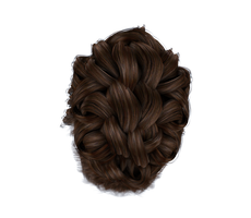 Stock Hair Images #3 top brown bun braid by madetobeunique