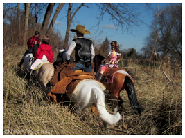 Breyer - Golden Trails by The-Toy-Chest
