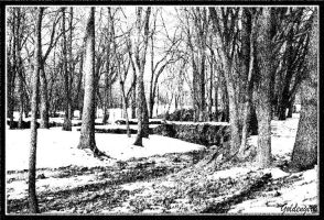 Winter in Black and White by goldengirl11