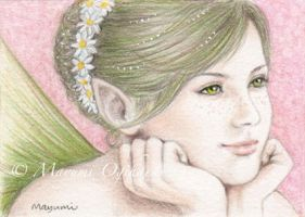 Spring Fairy - ACEO by MayumiOgihara
