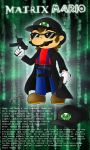 Matrix Mario by Blue-the-Echidna