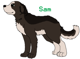 SPN Dogs - Sam Winchester Ref by BanditKat
