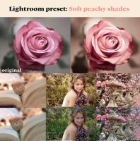 Soft peachy shades by Pamba
