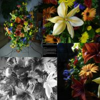 Gerbera and Lily Arrangement by Melyssah6-Stock