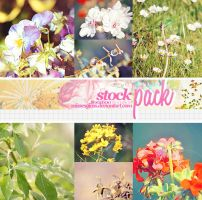 Stock Pack June 2012 by Missesglass