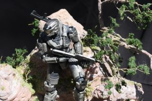 Custom Halo Reach Stand 02 by supman098