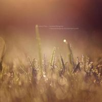 in a day_dream on. a hill by JeanFan