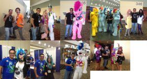 BronyCon 2013 Hsving FunFunFunFunFunFUNFUNFUN!! by THAT1ANDONLY