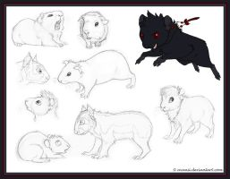 Sketchdump: Guinea Pigs by Avanii