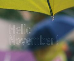 Hello Nov by Blurry-Photography
