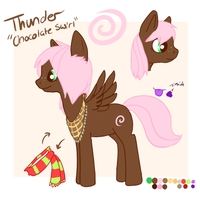 Pony Thunder Reference by Thunderclap12