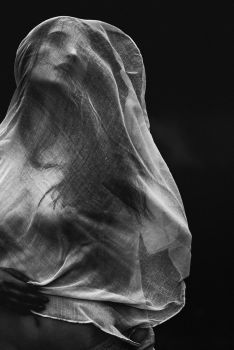 Veiled by Dapicture