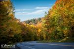 Road through the foliage by digitalKATALY5T