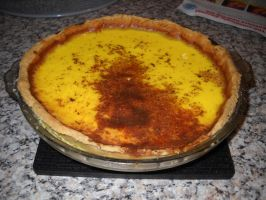 Egg Custard Tart by Bisected8