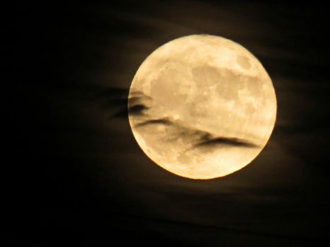 November 14th Super Moon by Michies-Photographyy