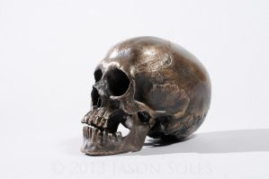 Bronze Skull by MrSoles