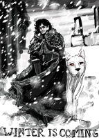 Winter is Coming by Conspiracy-Z-Cycle