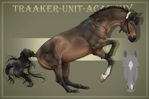 Traaker Import 136 |Custom by BRls-love-is-MY-Live