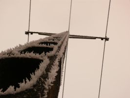 Electricity line frozen by Myq