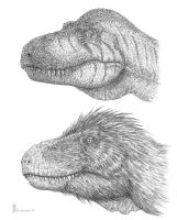 Trex heads variations by dustdevil