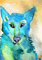 Blue Wolf ACEO by Erinwolf1997