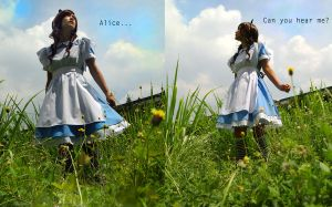 W-Where am I? :: Alice cosplay by missmustache