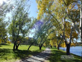 Canberra Cycle by BrendanR85