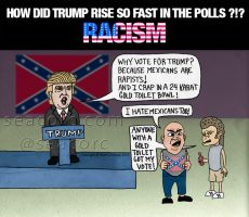 Why is Donald Trump 1st in the Polls? Racism! by seacorc
