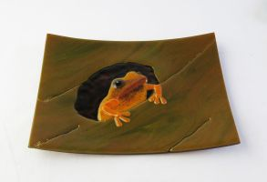 Frog in a Hole Fused Glass Dish by trilobiteglassworks