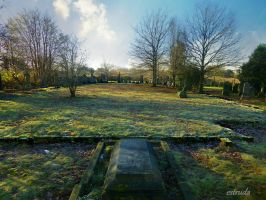 All That Remains by Estruda