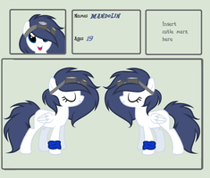 :THE OFFICAL REFERENCE SHEET: by GlimmerGalaxy