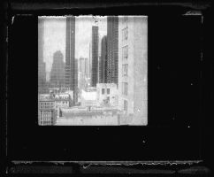 instant view. by analogphoto