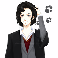 Young Sirius Black by slvadrgn