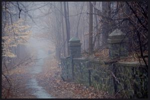 Foggy Path by dark4Maxine