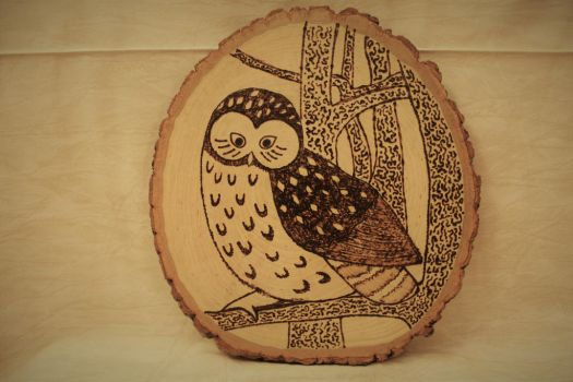 Woodburned Owl by Chiropterix-esque