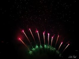 Fireworks at DH by Zlata-Petal