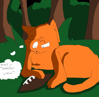 WHAT IN STARCLAN IS THIS? by Marlakyokitty