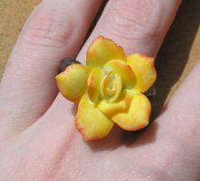 Garden Party Rose Ring by Izile