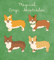 Magical Corgi Adoptables by themarvelgirl