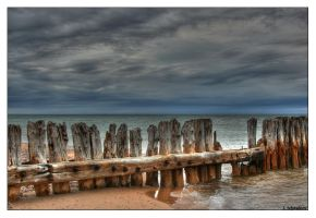 Whitefish Point by Limaria