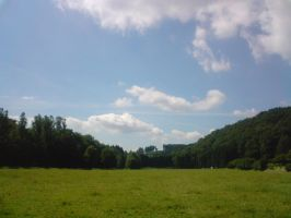 Green Fields of Altenberg by vintersong