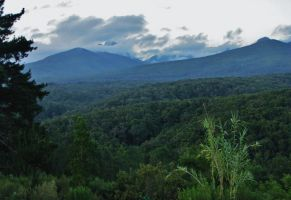 Blue mountains + green woods 1 by AniaBuckle