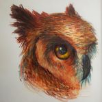 Great Horned Owl by HoneyBunny249