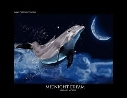 Midnight Dream by BarbaraMoran